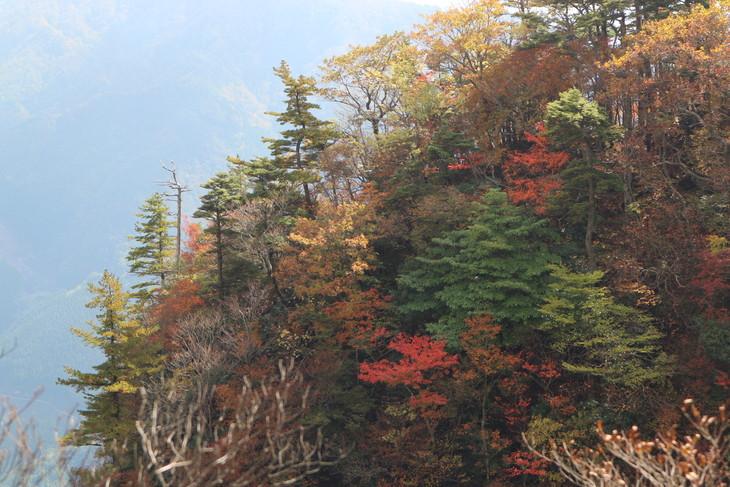 静かな山歩き(大障子岩&池の原展望所)_e0272335_5285230.jpg