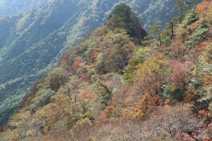 静かな山歩き(大障子岩&池の原展望所)_e0272335_5365866.jpg
