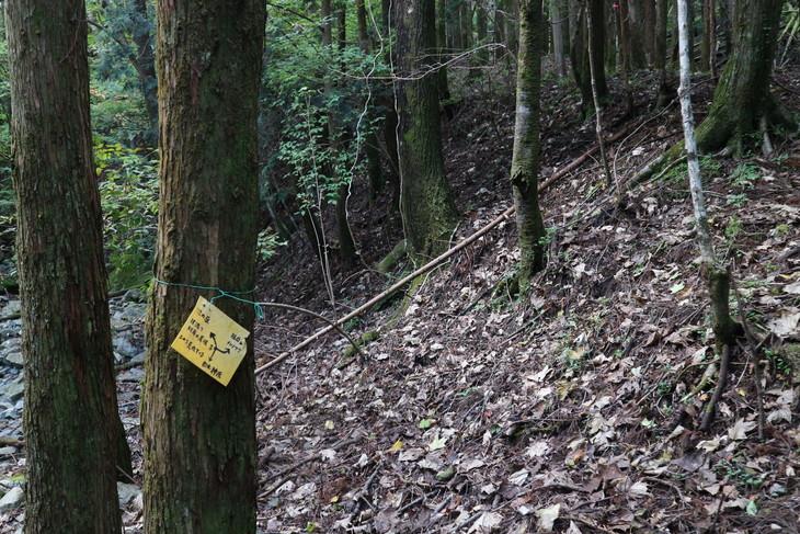 静かな山歩き(大障子岩&池の原展望所)_e0272335_811385.jpg