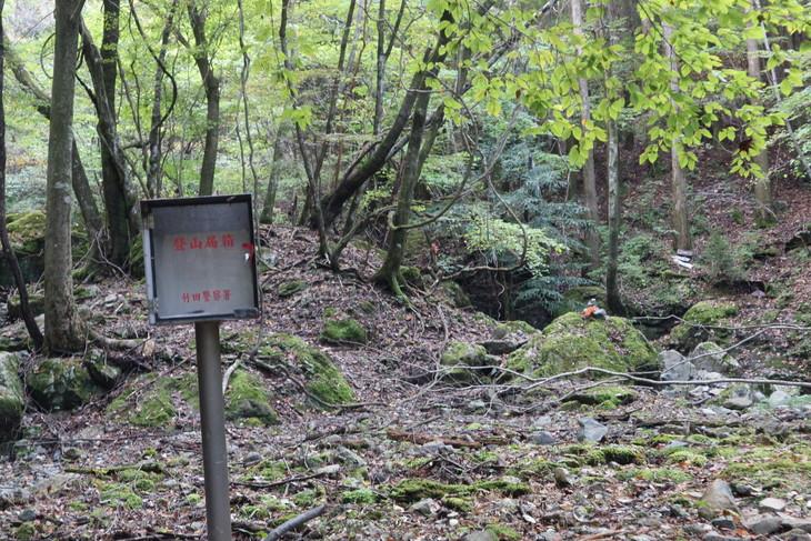 静かな山歩き(大障子岩&池の原展望所)_e0272335_834998.jpg