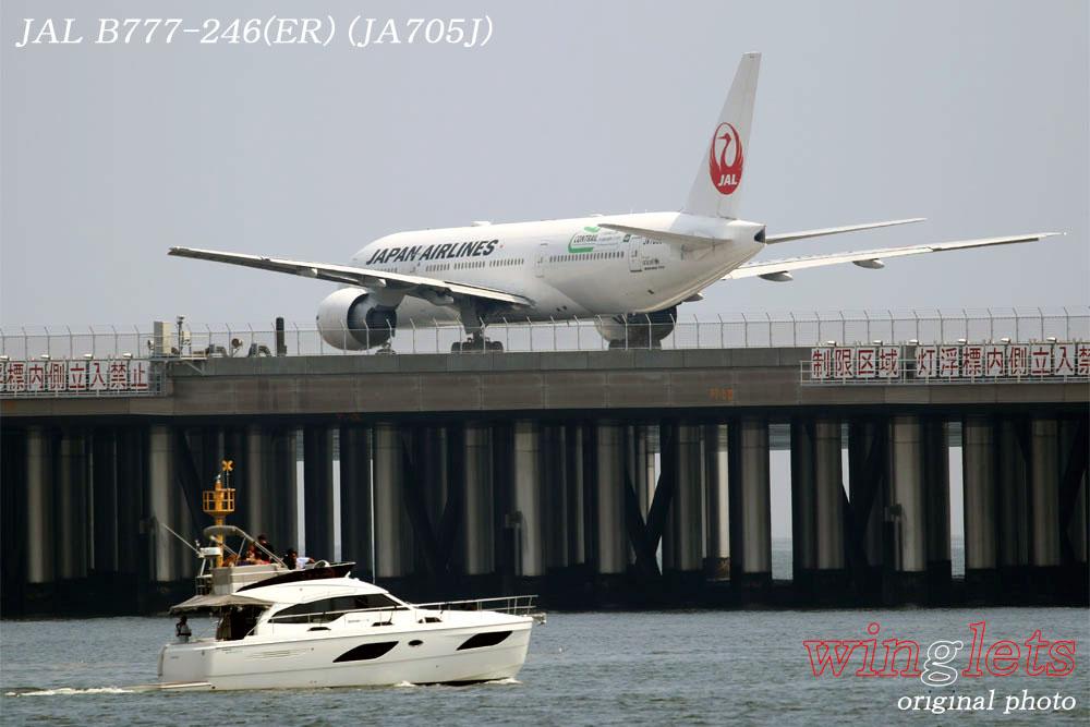 '19年 川崎・浮嶋公園レポート ・・・ JAL/JA705J_f0352866_21312035.jpg