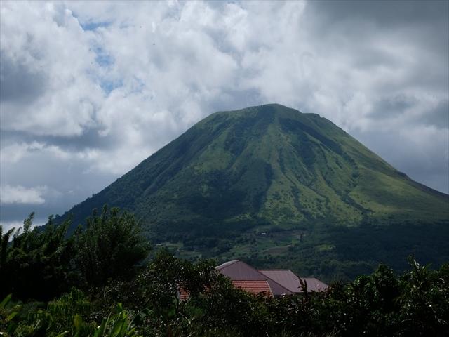 Manado Sulawesi採集紀行 その2_a0067578_23585797.jpg