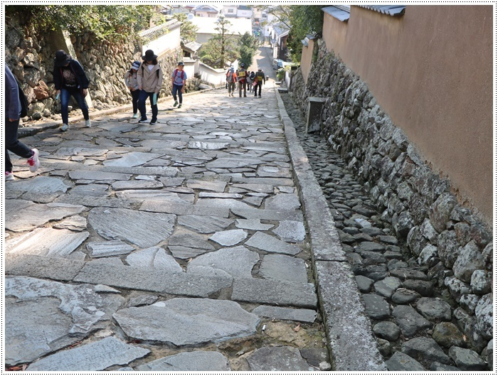 杵築城下町健康歩行ラリーに参加しました~本日の歩数、14500歩なり~\(>∀<)/_b0175688_19520663.jpg