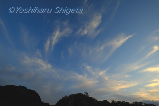 〜Sky 限りない想い〜_c0152400_18330140.jpg