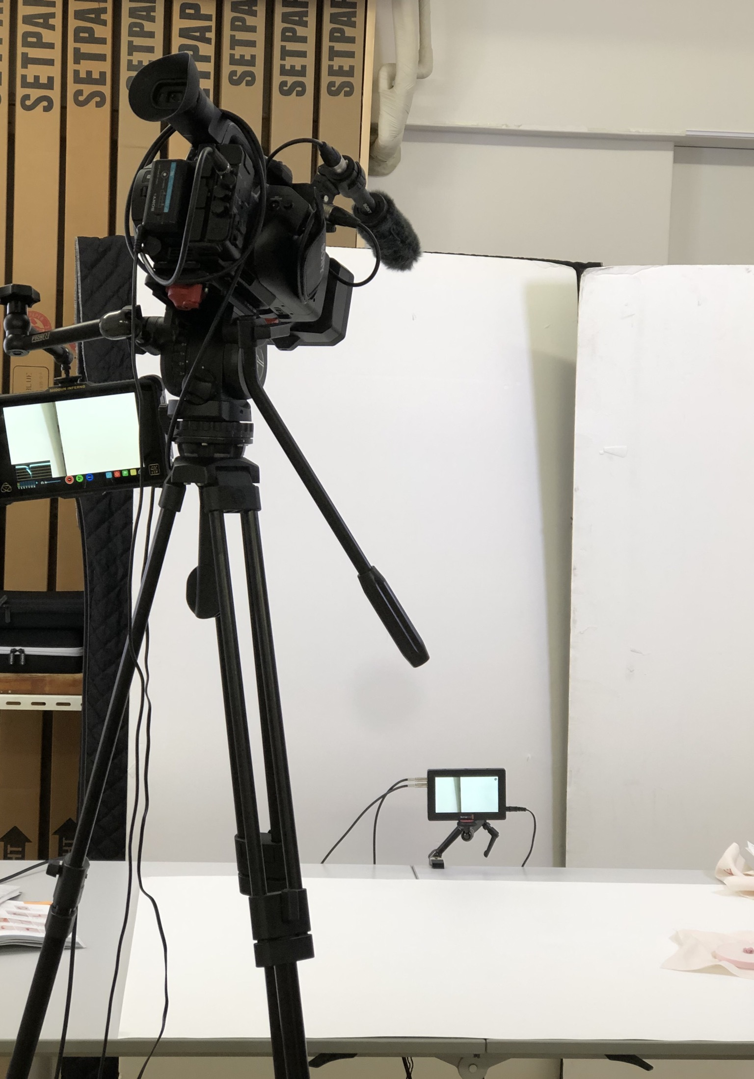 リボン刺しゅうオンライン講座の動画撮影に行って来ました_a0157409_10232645.jpeg