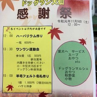 10月27日(日)ドッグラン大仙の様子と「らしく倶楽部」_f0170713_14065564.jpg