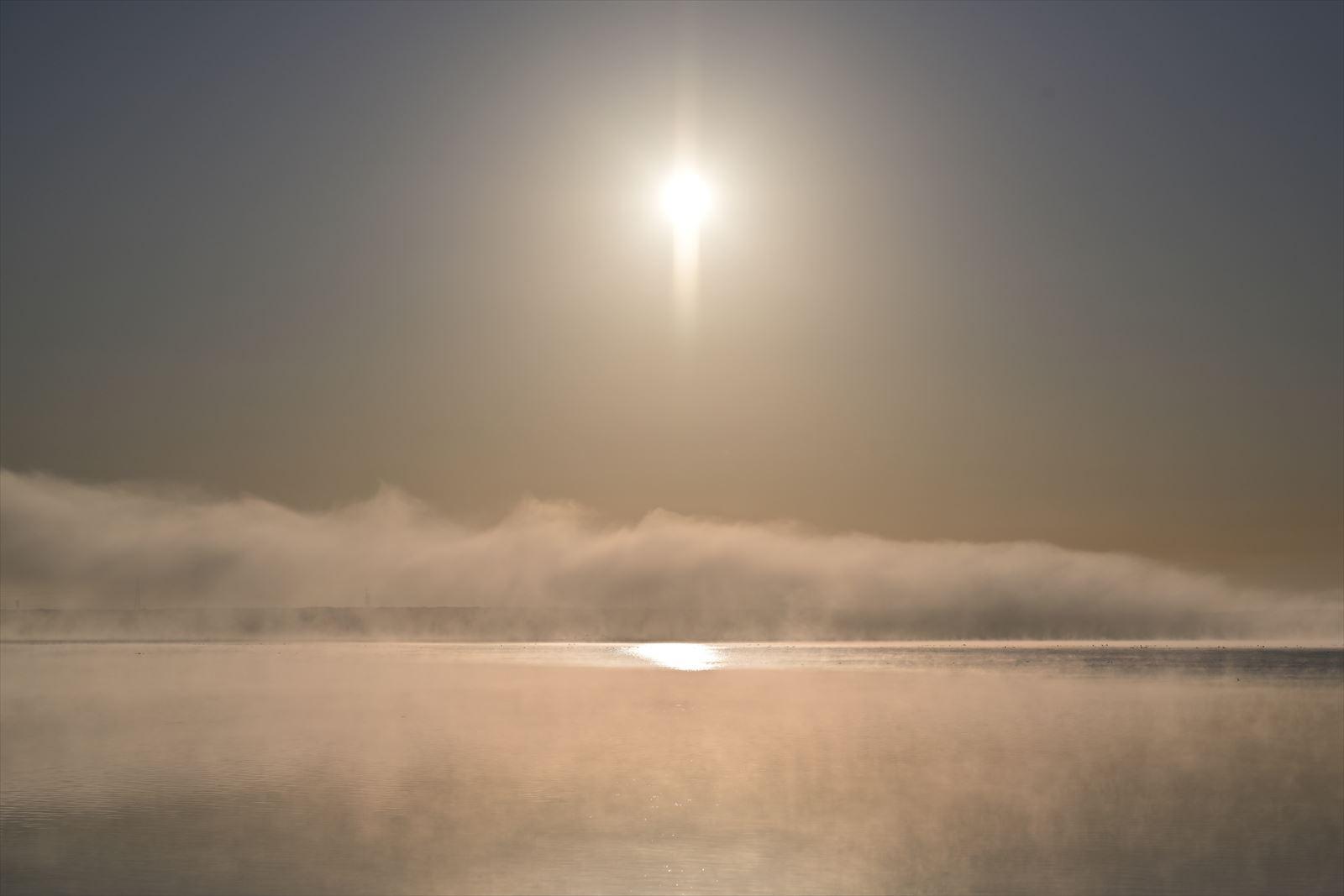 気嵐のウトナイ湖_a0145819_13105423.jpg