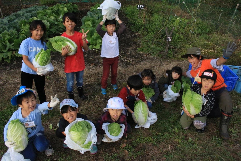 SGおしぎっぱ隊「収穫してきました♪」_b0174425_23380457.jpg