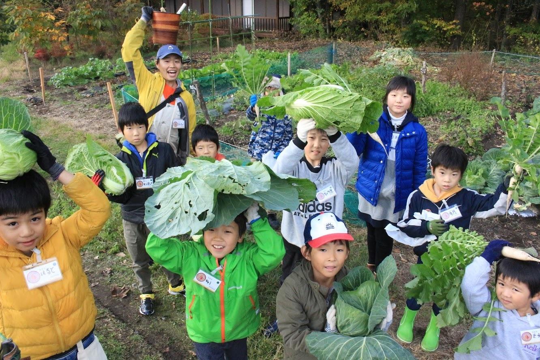 SGおしぎっぱ隊「収穫してきました♪」_b0174425_23383025.jpg