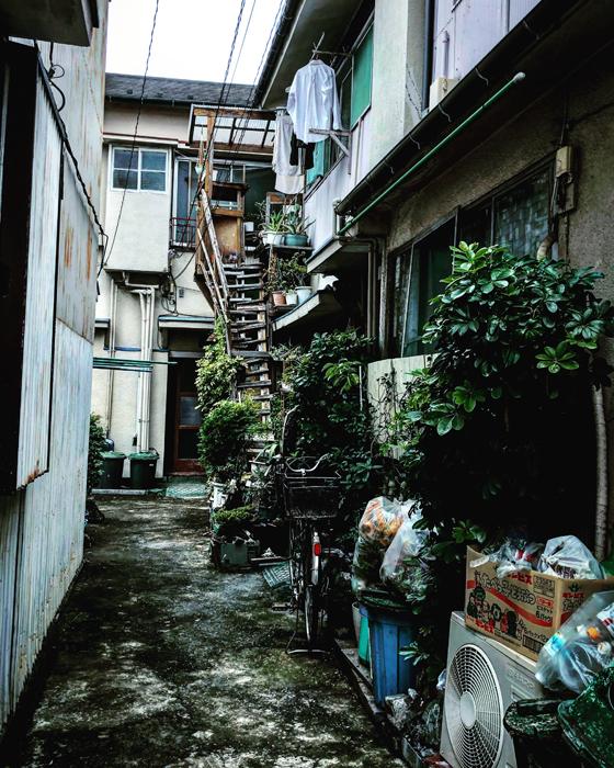 大田区西六郷 / iPhone 8_c0334533_00154576.jpg