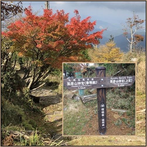 やまびこ会の会旗・英彦山へ_e0164643_14221865.jpg