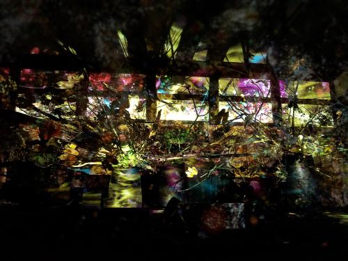 flowers BY NAKID (二条城)_e0292546_02262260.jpg