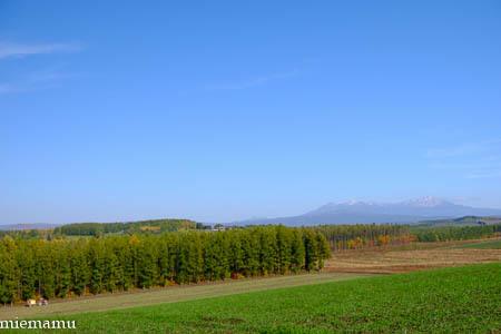 就実の丘から~10月の就実_d0340565_19382187.jpg