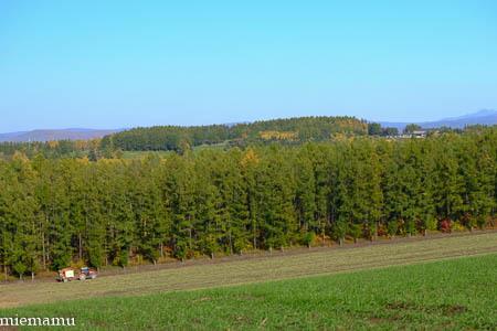 就実の丘から~10月の就実_d0340565_19390506.jpg