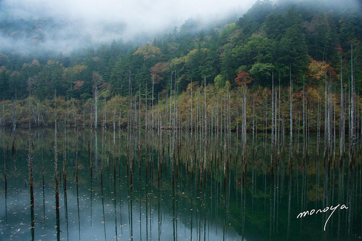 自然湖の秋_c0085877_07011944.jpg