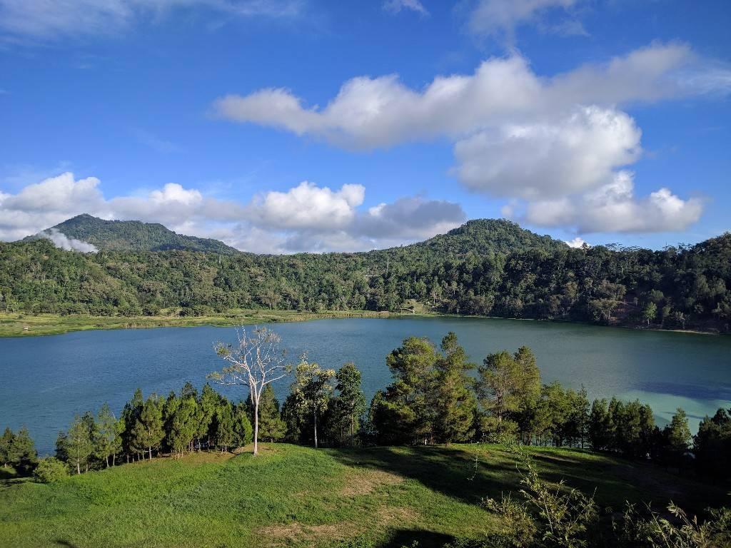 Manado Sulawesi採集紀行 その2_a0067578_16540499.jpg