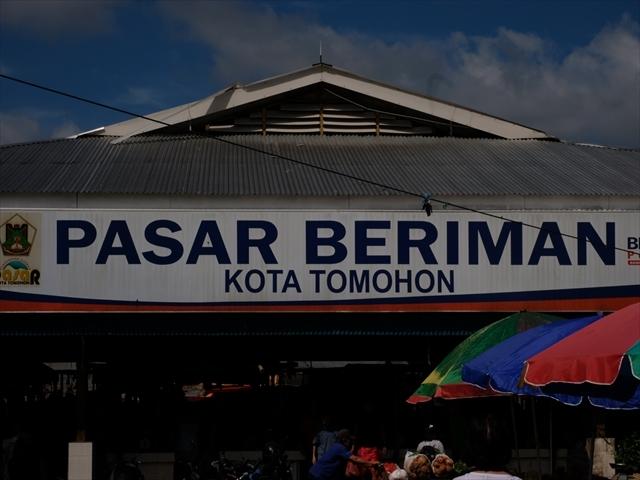 Manado Sulawesi採集紀行 その2_a0067578_17042924.jpg
