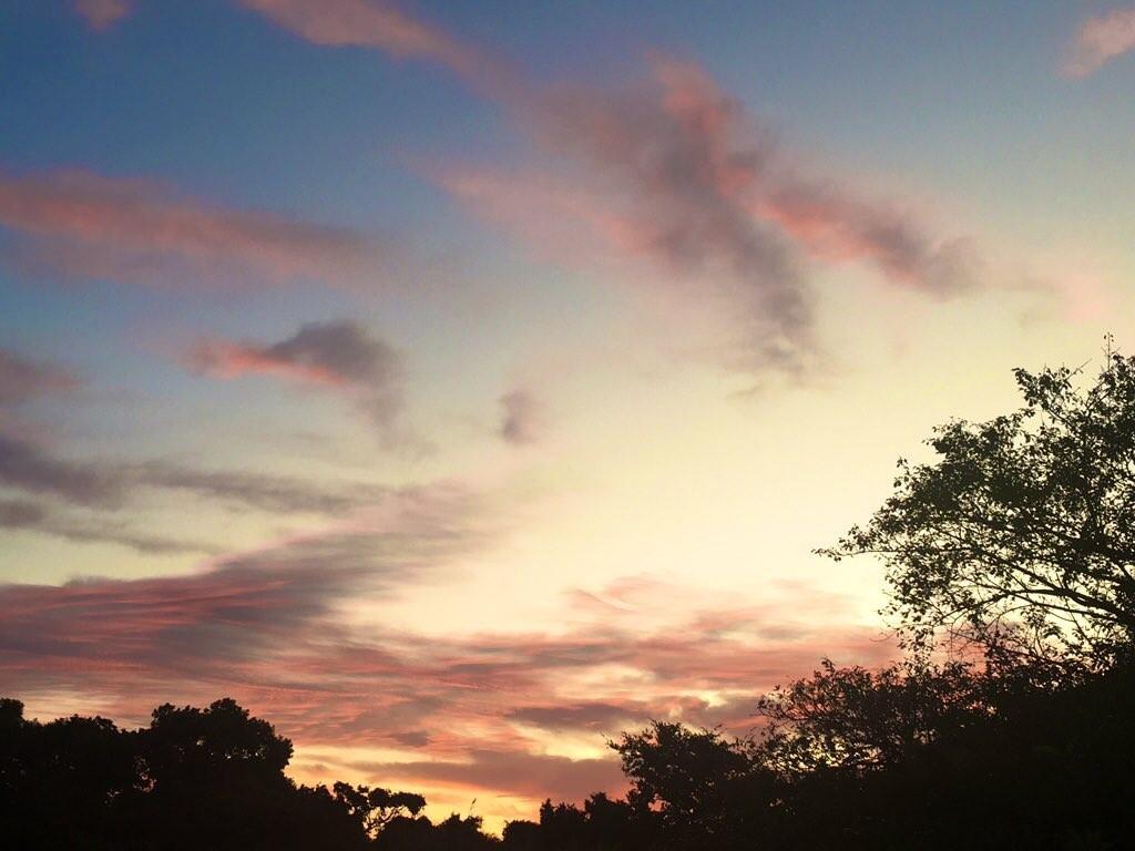 ピンク色の雲に癒される~_c0344679_20025674.jpg
