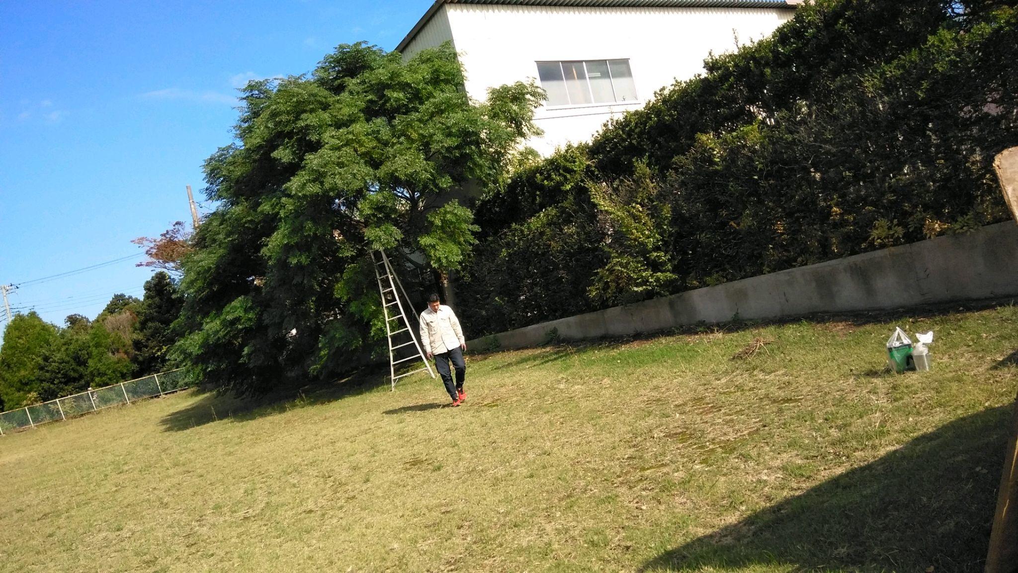 2019年10月29日 茨城沖縄県人会芸能祭ひたちなか市 その6_d0249595_19503360.jpg