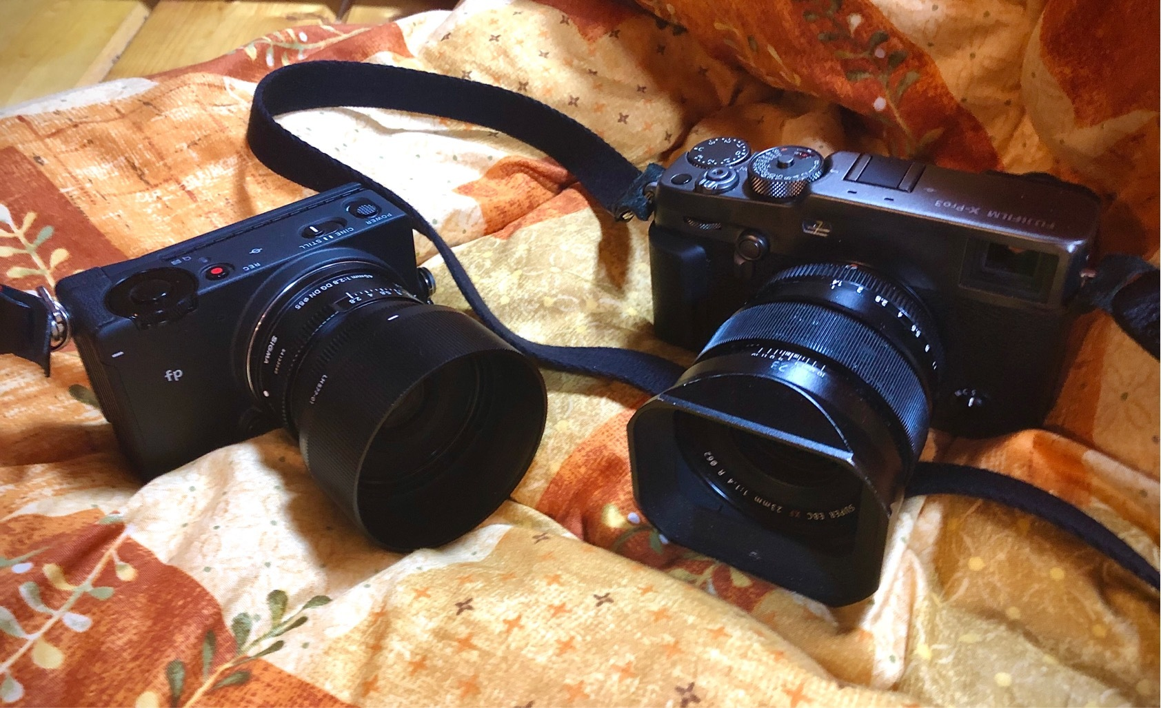 新しいカメラ_e0367501_02044728.jpeg