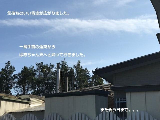 ウドばあちゃん、虹の橋へ・・_f0242002_11471443.jpg