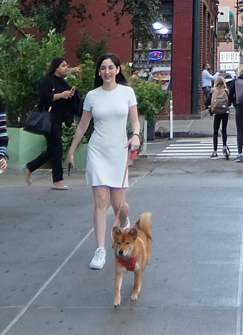 ハドソン・ヤード周辺で見かけた犬の散歩風景_b0007805_02233261.jpg