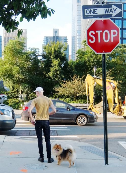 ハドソン・ヤード周辺で見かけた犬の散歩風景_b0007805_02272261.jpg