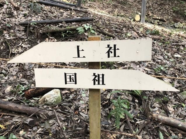 世界が欲した日本列島の御神体。_b0409627_17130064.jpg