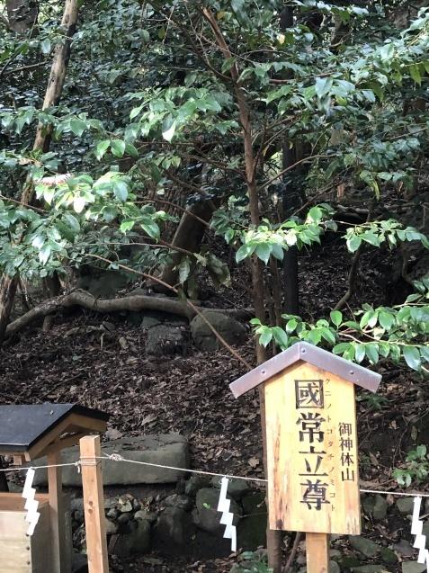 世界が欲した日本列島の御神体。_b0409627_17170041.jpg