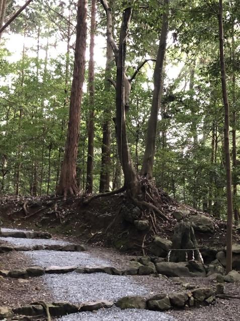 世界が欲した日本列島の御神体。_b0409627_17382714.jpg