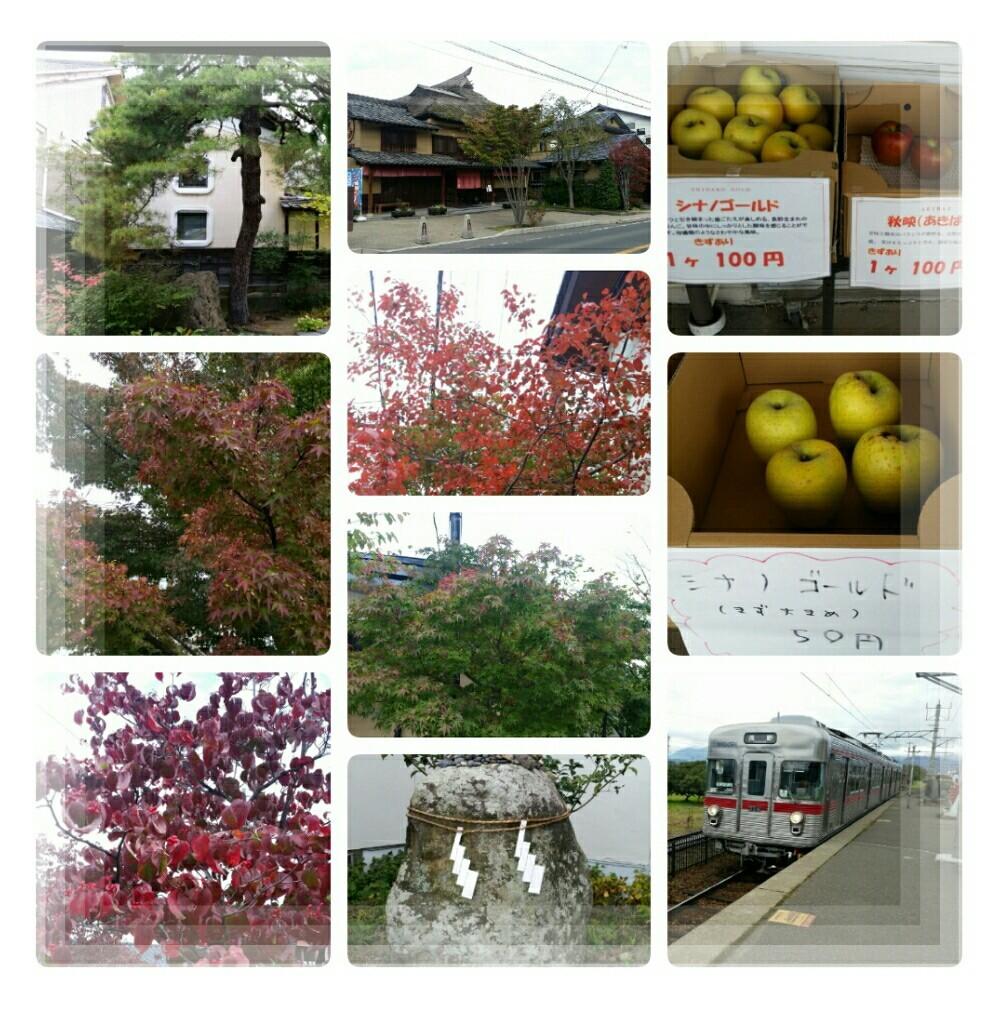 2019年10月一泊旅行~目的地に行く前に長野に♪_d0219834_05502340.jpg