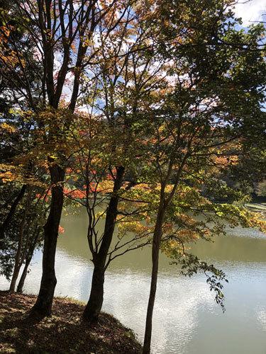 【レッスン見本】マンスリークロスステッチ・2色刺しver.(10月分)_e0204334_15492543.jpg