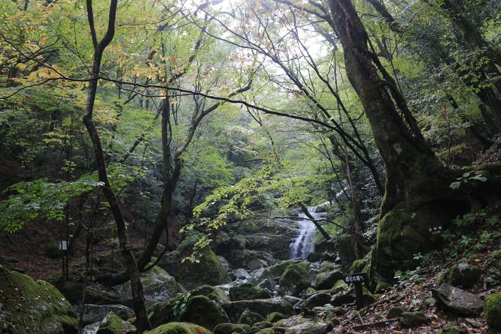 神掛岩トレッキングコース&傾山冷水登山口!_e0272335_19214014.jpg