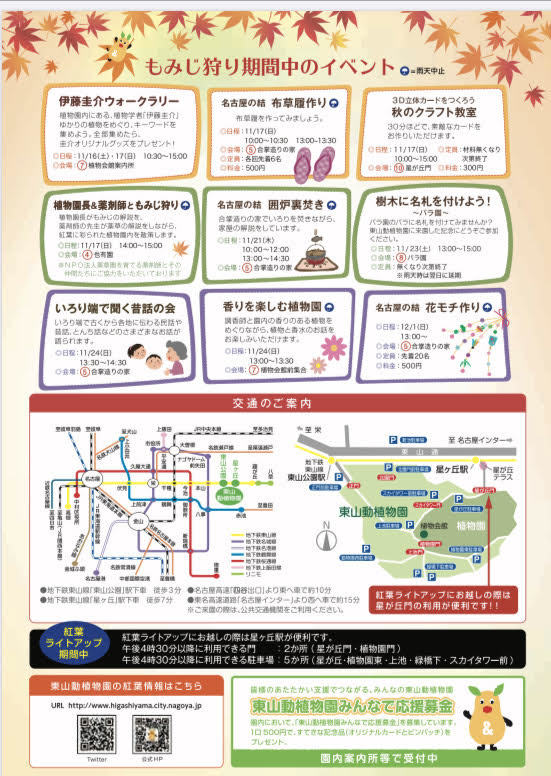 東山動植物園 紅葉ライトアップ2019_f0373339_14133978.jpg
