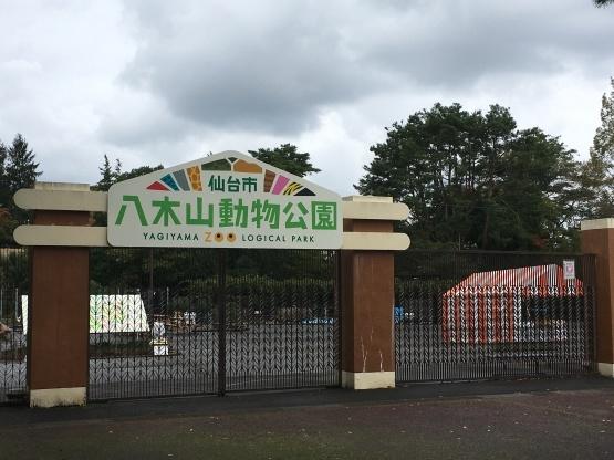 10月24日(木)八木山動物園1_b0206845_10281608.jpeg