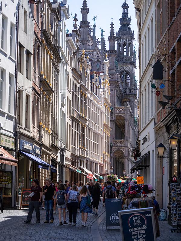 オランダ・11 タリスに乗ってブリュッセルへ_a0003650_23140051.jpg