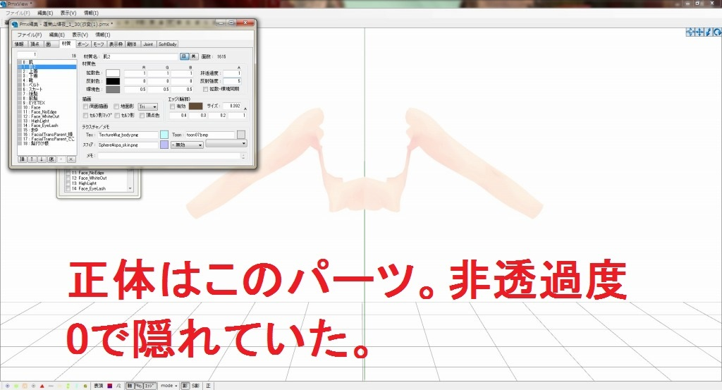 MMD「シェーダーを適応するとモデルが透過する謎について」_b0362459_20030602.jpg