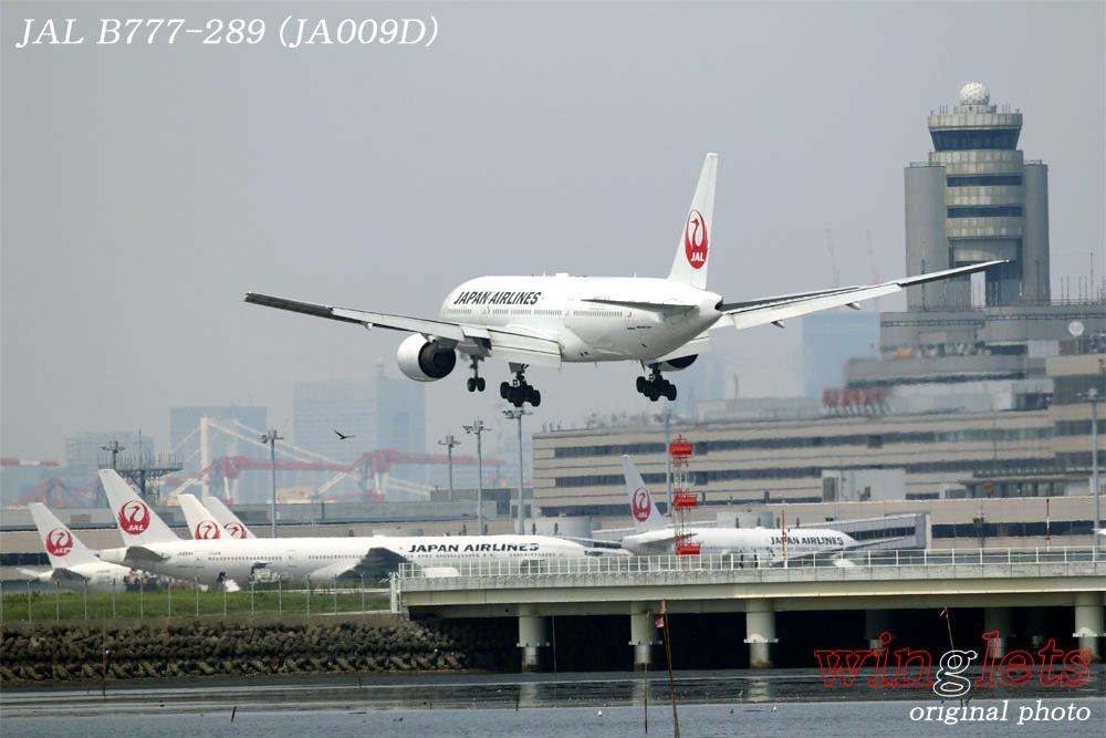 '19年 川崎・浮嶋公園レポート ・・・ JAL/JA009D_f0352866_20145573.jpg