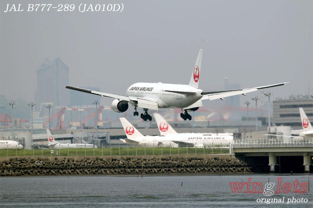 '19年 川崎・浮嶋公園レポート ・・・ JAL/JA010D_f0352866_22314848.jpg