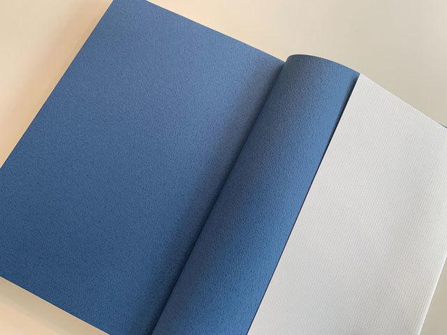 虚子忌の空の青。_f0071480_17420496.jpg