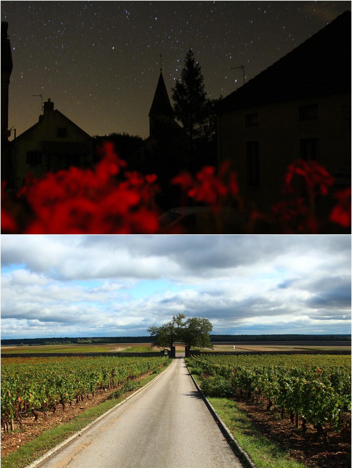ブルゴーニュ ワイン旅_a0107981_15431036.jpg