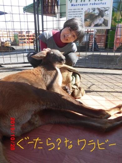 移動動物園のお客さま_b0231886_19233084.jpg