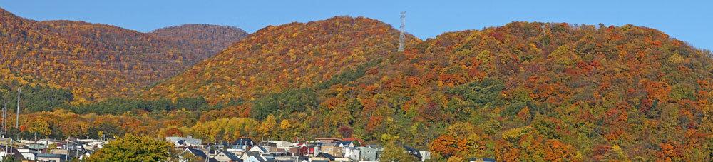 山の紅葉_d0162994_07451831.jpg