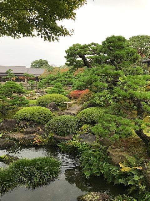 日本庭園 由志園_f0204295_16431246.jpg