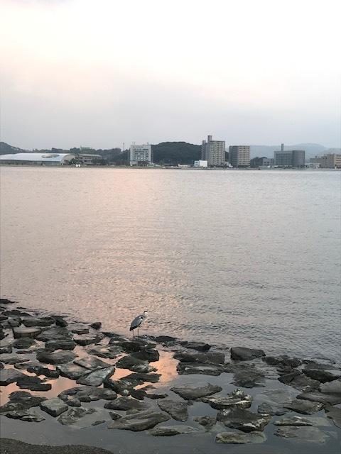 日本庭園 由志園_f0204295_17201784.jpg