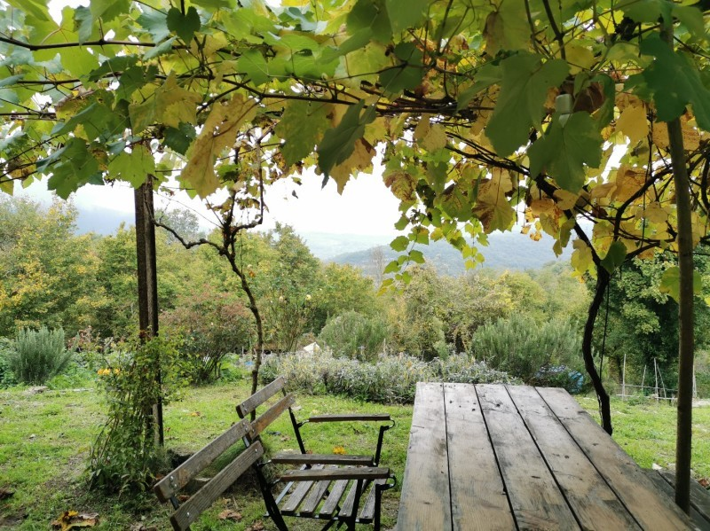 秋が深まるトスカーナ_f0106597_16203590.jpg