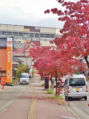 駅通りは紅葉真っ盛り_c0336902_22501788.jpg