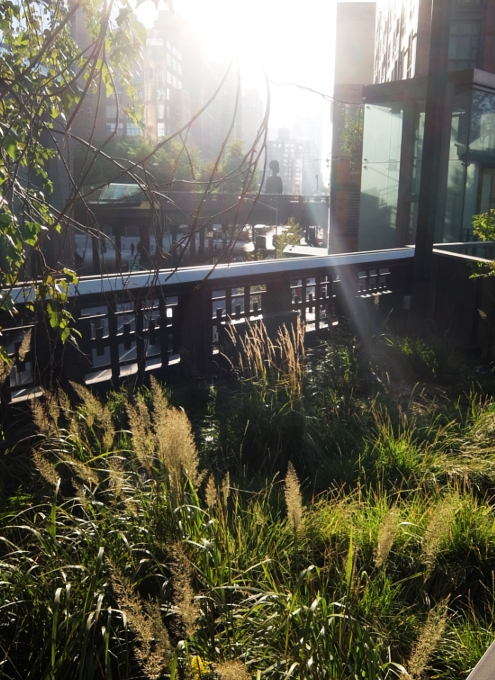 早朝の空中公園ハイラインをお散歩_b0007805_05292591.jpg