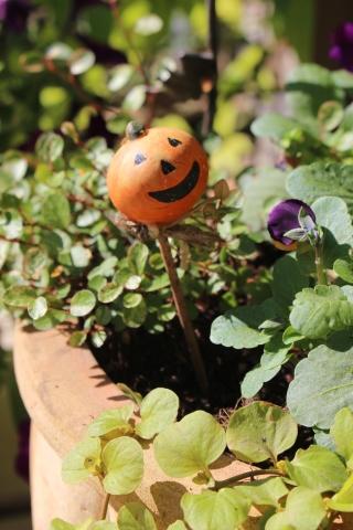 ハロウィン寄せ植え&お菓子♪_e0341606_14581372.jpg