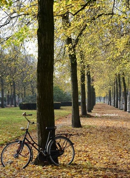秋色のアムステルダム_a0153807_23062833.jpg